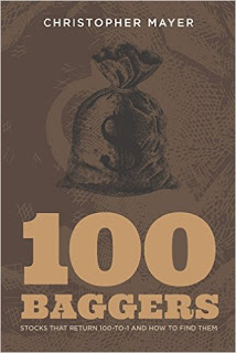 100 Baggers: Stocks That Return 100-to-1 and How To Find Them (Chirstopher W. Mayer)