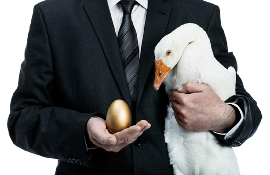 Invest in Golden Goose or Golden Egg?