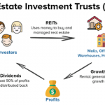 REITS Investing 101: Understanding the different types of REITs