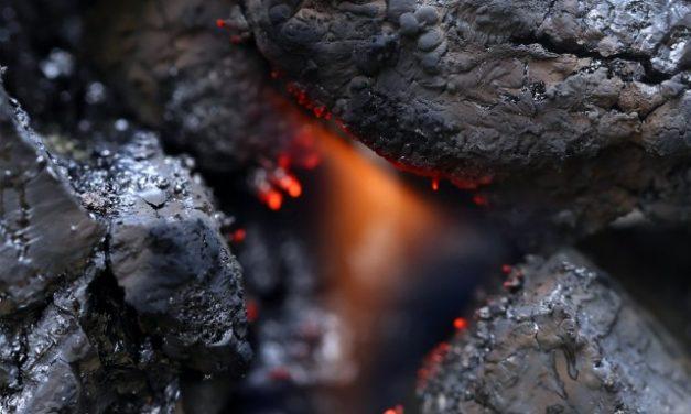 GEAR, Geo Energy & BlackGold Reported 2QFY17 Revenue Growth