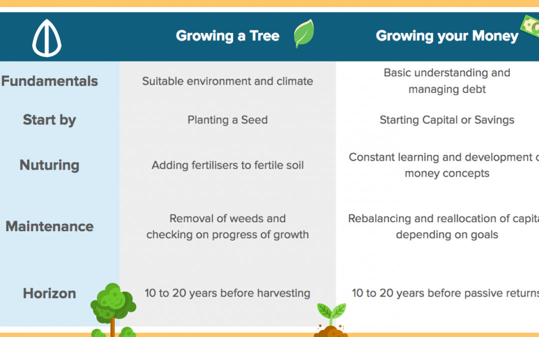 Why Growing Your Money Is Like Planting A Seed