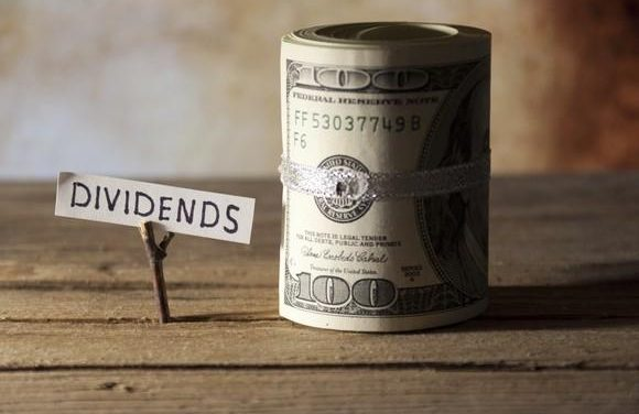 What is Dividend Payout Ratio and How to Interpret it?