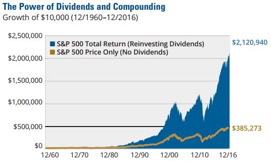 The Importance of Dividends