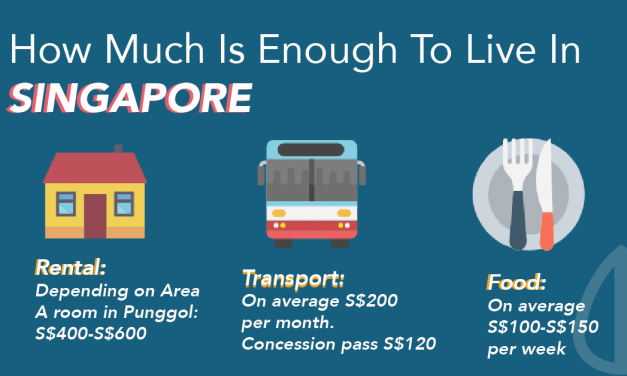 Guide for Expats in Singapore: How Much Is Enough To Live In Singapore?