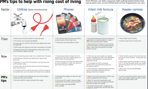 Tips to Reduce Cost of Living (PM Lee's & SG Budget Babe's version)