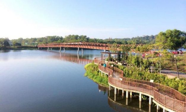 5 reasons why the upcoming 2019 Punggol EC on Sumang Link will be another sell-out