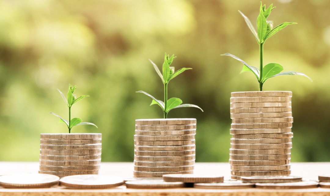 Free Webinar – How to find growing dividend-paying stocks in 2019