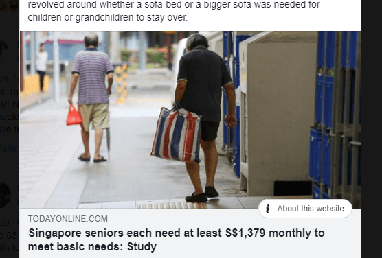 The Minimum Basic Standard of Living for Older Singaporeans Report was Useful for Me