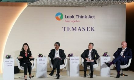 8 things I learned from Temasek Review 2019