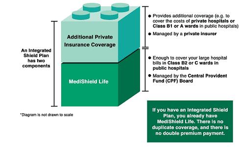 Best Shield Plan for Newborn Baby (Updated 2019)