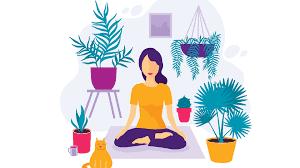 Can Meditation Make us Better Investors?