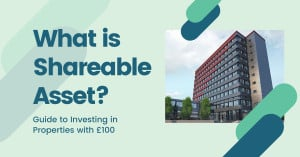 What is Shareable Asset?