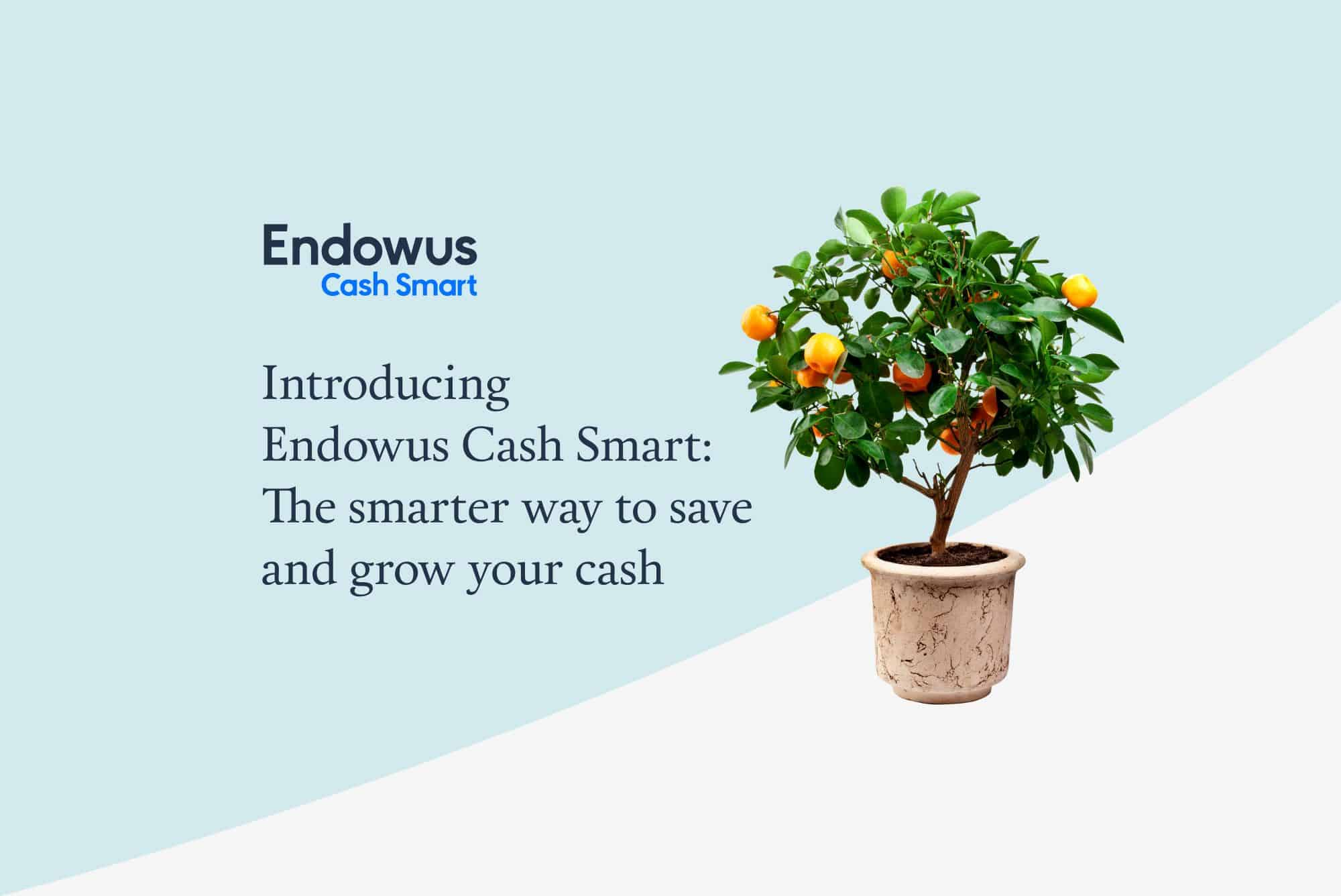 Endowus Cash Smart: Earn up to 2.2% returns per year with no lock-ups or limits