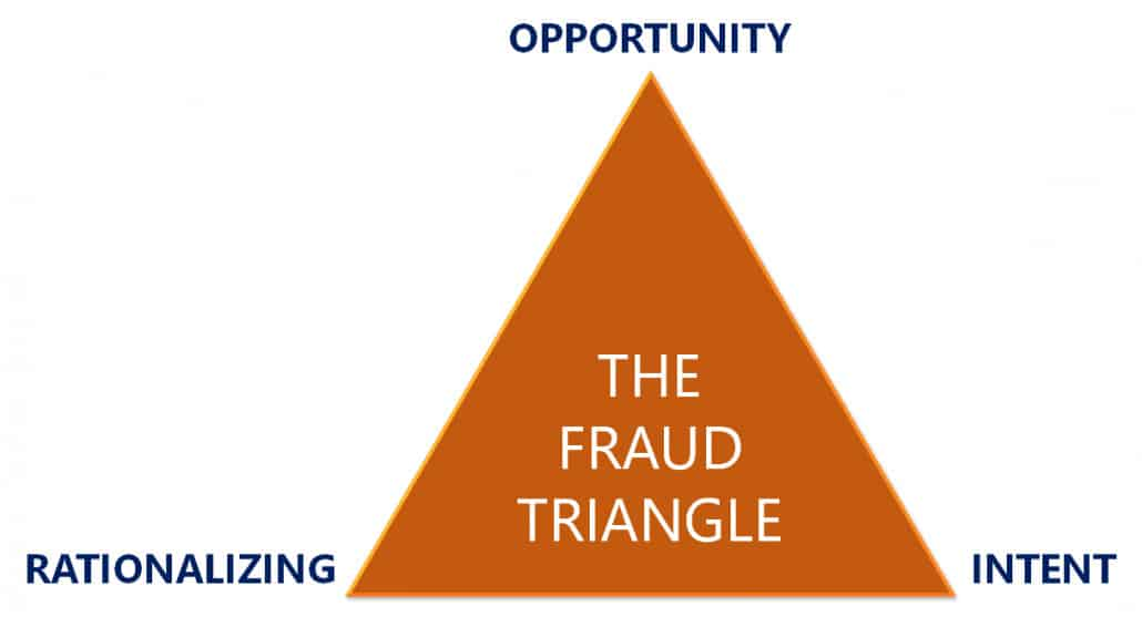 Auditors Cannot Protect You from Investing in Frauds