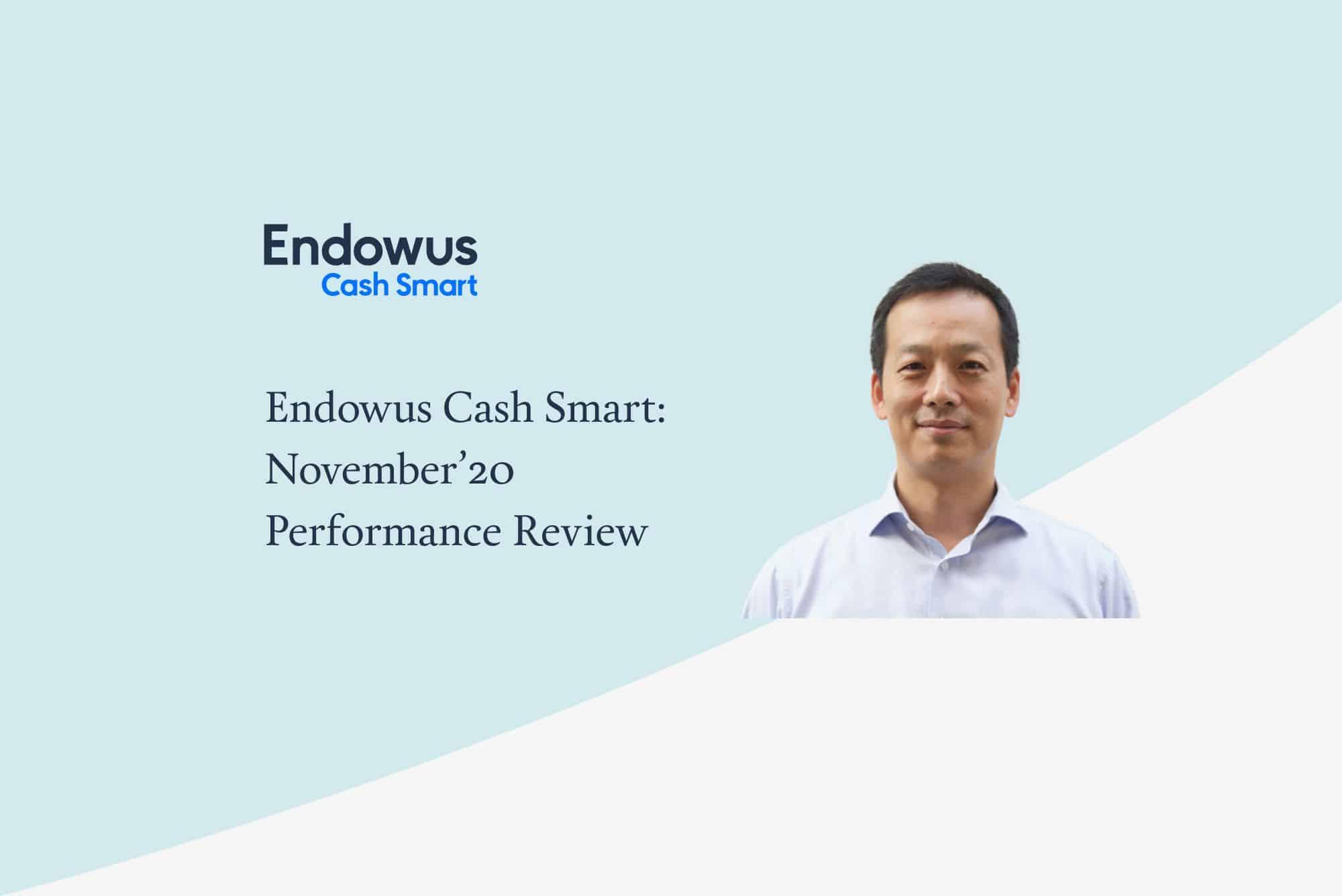 Endowus Cash Smart – November Review & Update