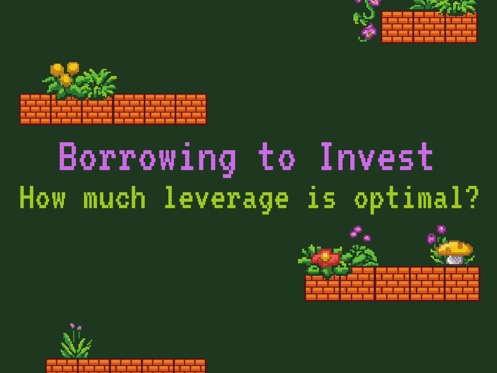 Borrowing to Invest: How Much Leverage is Optimal?