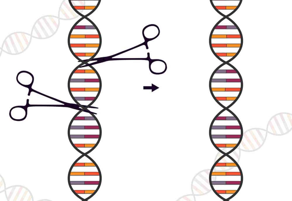 You can't ignore the genomics market