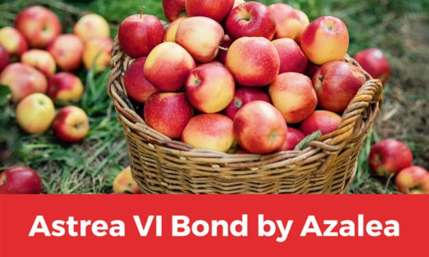Astrea VI Bond IPO: Why You Should Have Applied Via Private Placement