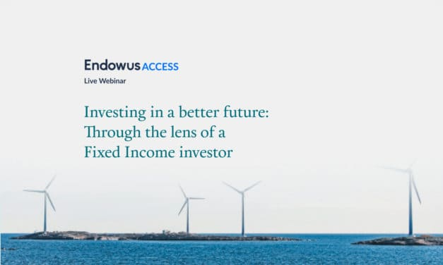 Webinar: Investing in ESG Fixed Income Funds – through the lens of ESG fund managers