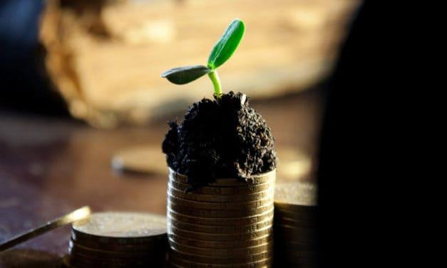 Share buybacks vs Distributing dividends