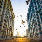 How To Monetise Your HDB Flat For Retirement In Singapore