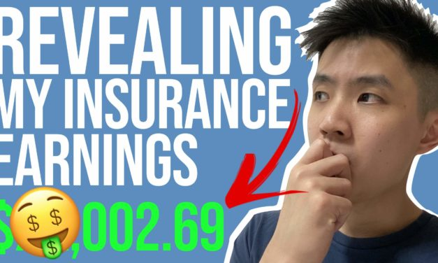 Revealing How Much I Earned in My First Year Selling Insurance